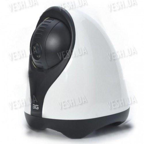 Охранная 3G (WCDMA 2100) видео камера, позволяющая просматривать живое потоковое видео и делать фото с вашего 3G мобильного телефона (модель WT-1041)