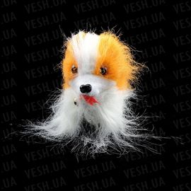Собачка Пекинес ходит, фото 1